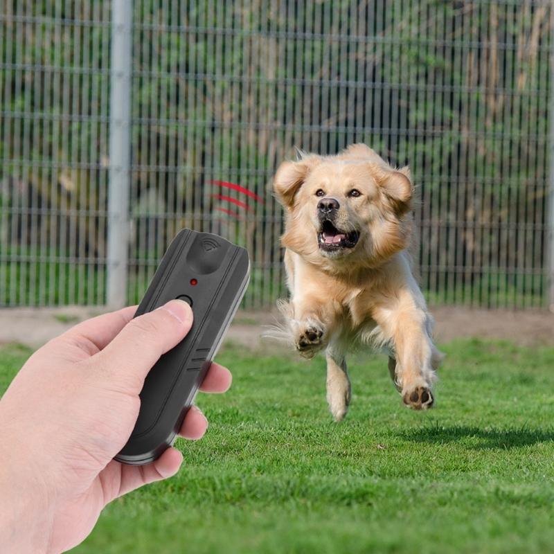 Виды отпугивателей от собак