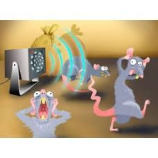 Советы по использованию ультразвуковых отпугиваетелей против грызунов